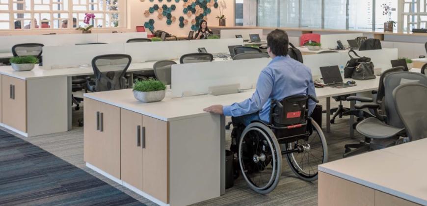 Inclusão da pessoa com deficiência no mercado de trabalho