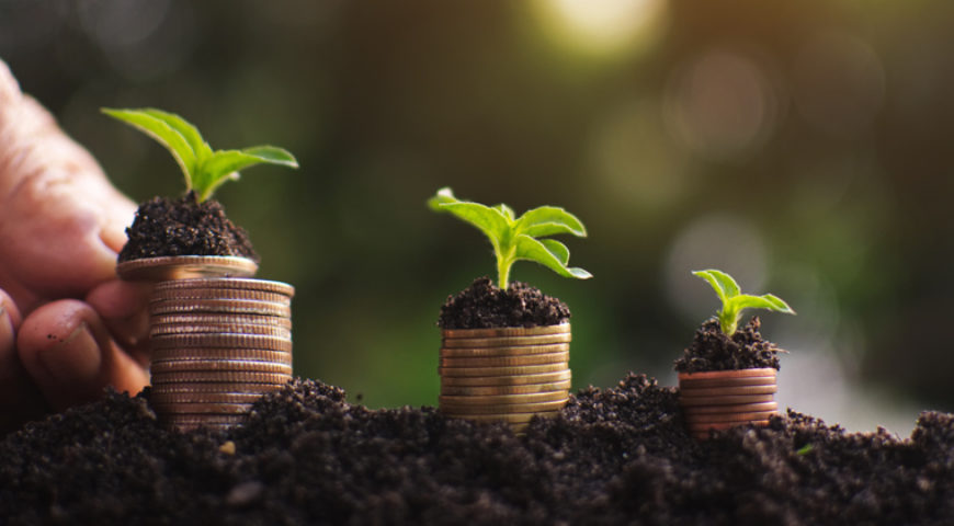 Empresas ESG: porque investir?