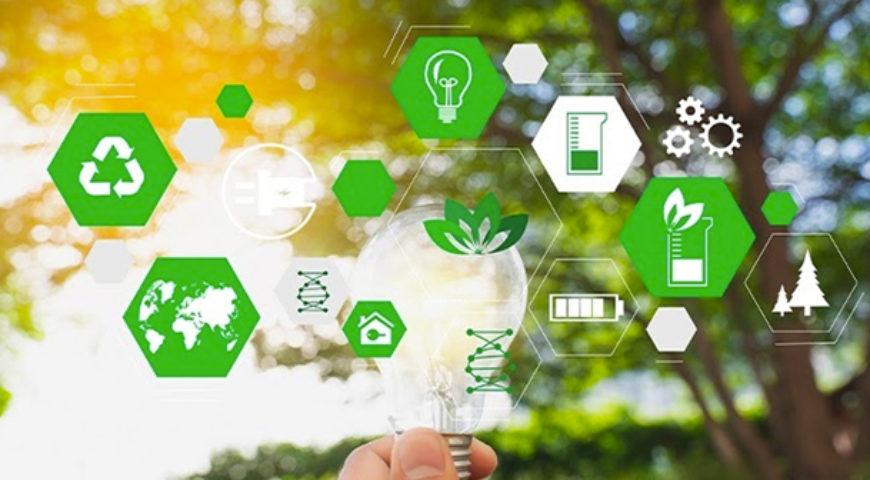 Qual a intenção das empresas que investem em Sustentabilidade?